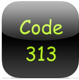 Code 313 logo